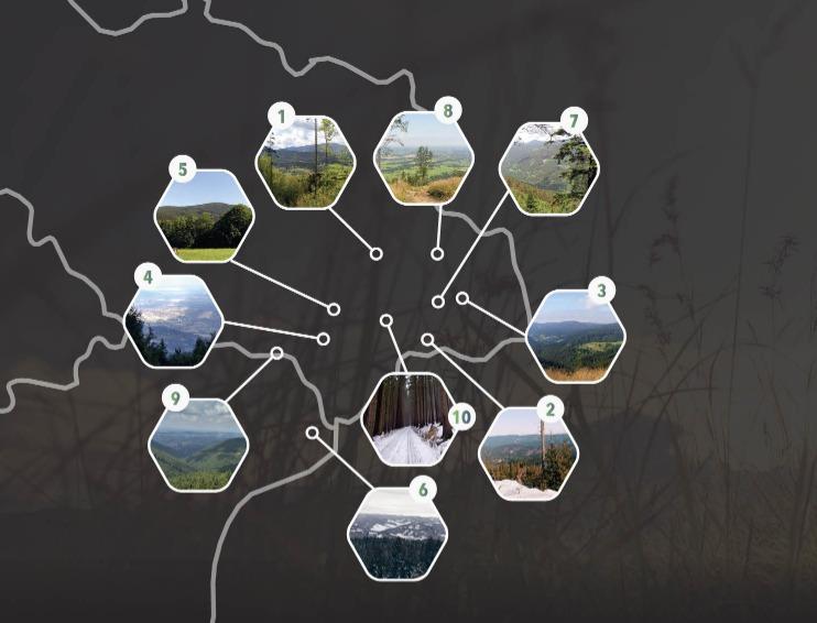 You are currently viewing Tipy na výlet v Beskydech a okolí